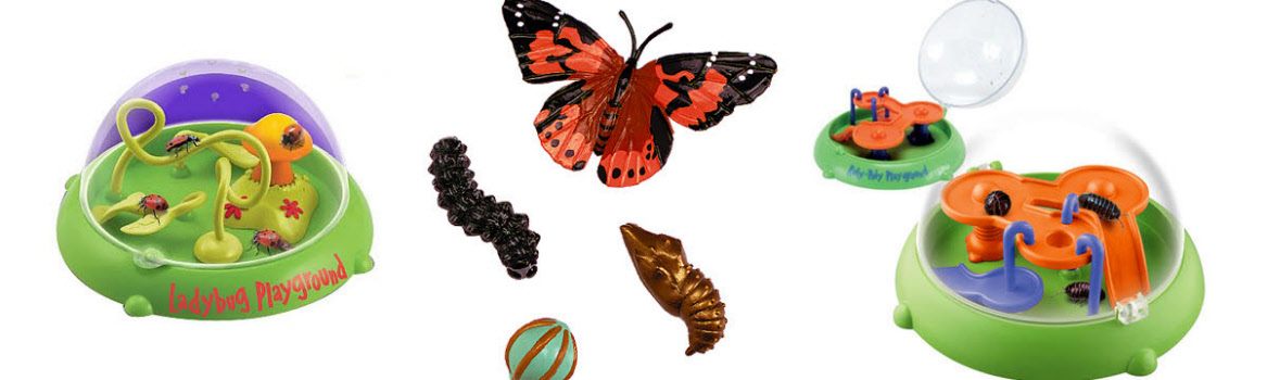 Nature Bug Kits & Toys